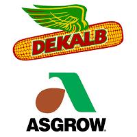 Dekalb Asgrow